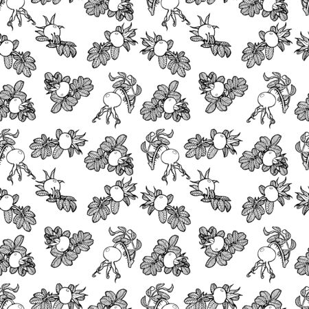 dog rose seamless vector hand drawed pattern