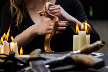 The witch keeps a snake for a sacrificial ritual