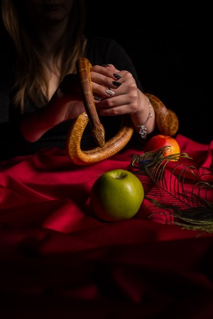 The witch holds a snake in his hand