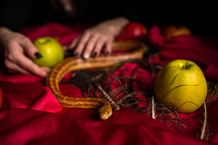 sacrifices: The serpent tempter on the witchs table