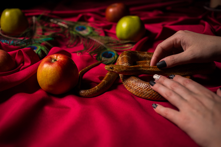 The snake rests in the hands of the priestess Stock Photo