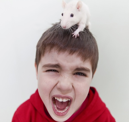 Image of screaming boy with a rat