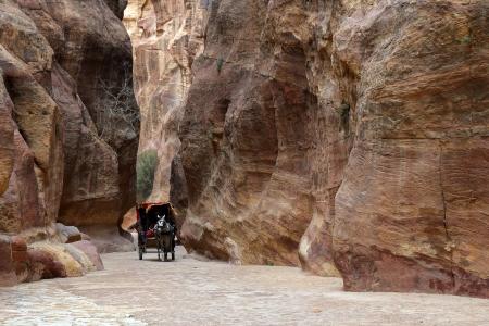Cart riding through canyon in Petra. photo