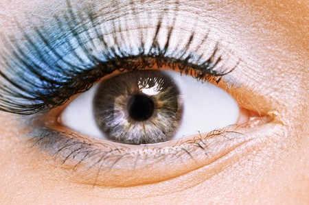 Front view of beauty female eye with blue make up it is large. Stock Photo - 8247668