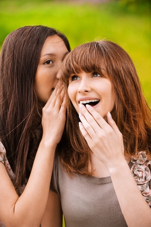 Two young beautiful women talking about something at summer green park. Stock Photo - 9980731