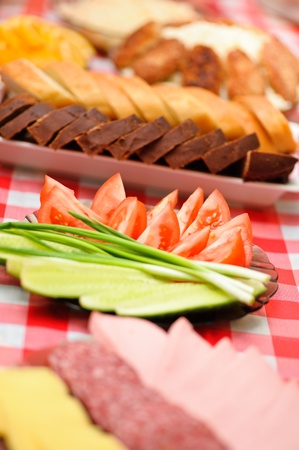 abundance food cheese,sausage,bread, green onions,tomatoes, cucumbers,mashed potatoes, burgers background tablecloth Stock Photo - 11254348