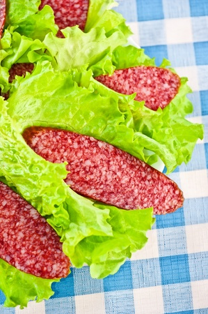 beautifully wrapped: beautifully cut slices of salami with splash of fat wrapped in fresh green salad on the background of blue and white cellular oilcloth tablecloths Stock Photo