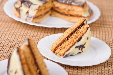 two-layer plate of pieces of cake covered with chocolate icing on bamboo table cloth Stock Photo - 11480609