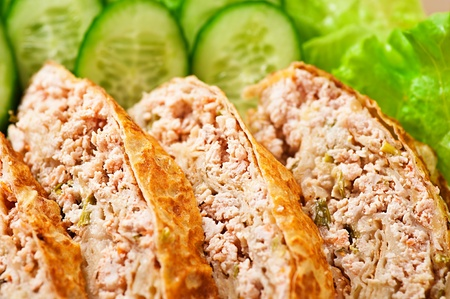 slices of savory meatloaf with vegetables cucumbers, lettuce, close-up Stock Photo - 11480490