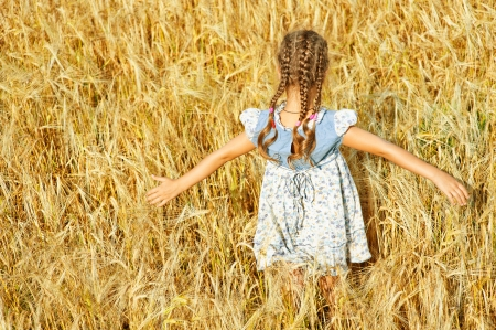 pigtails: Beautiful little girl with pigtails spread her arms on field with ripe wheat eared