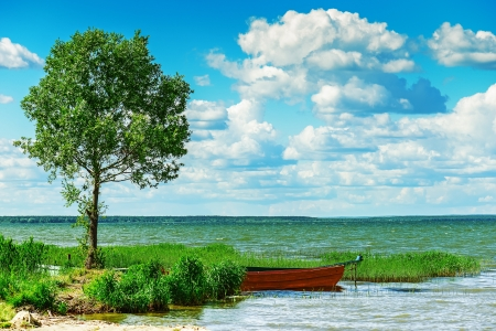 Beautiful summer view of lake, boat and lone tree. photo
