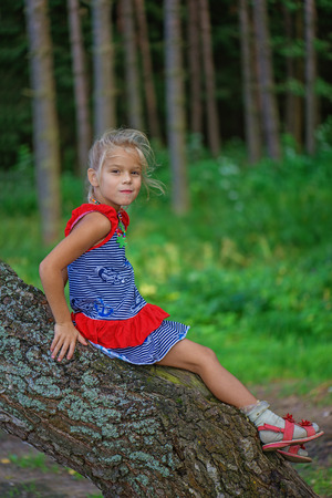 climbed: Beautiful little smiling girl climbed on tree forest.