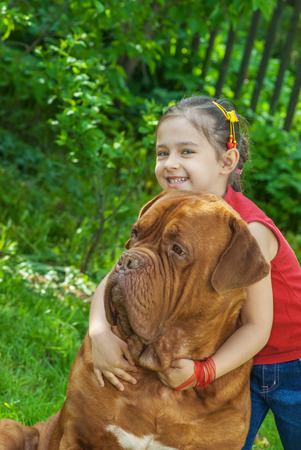 bordeaux mastiff: Young smiling girl astride big dog of breed