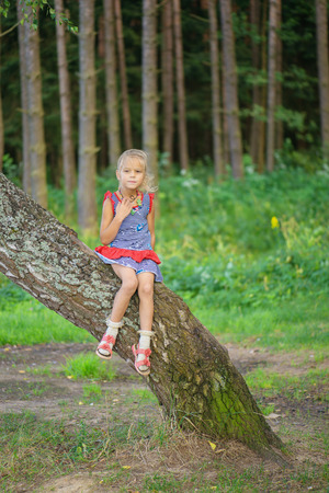 Beautiful little smiling girl climbed on tree forest.