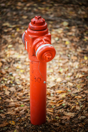dispense: A red standpipe is a freestanding pipe fitted with a tap which is installed outdoors to dispense water in areas which do not have a running water supply to the buildings. Stock Photo