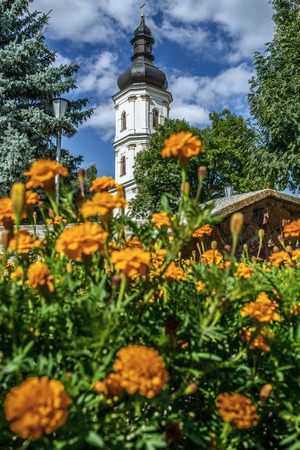 campanile: Bell tower of Cathedral of Assumption of Virgin Mary (Pinsk, Belarus) Stock Photo