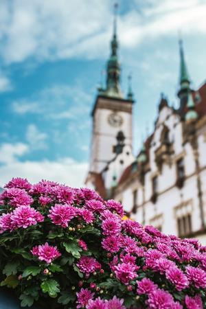 olomouc: Town hall in Olomouc, Moravia, Czech Republic.