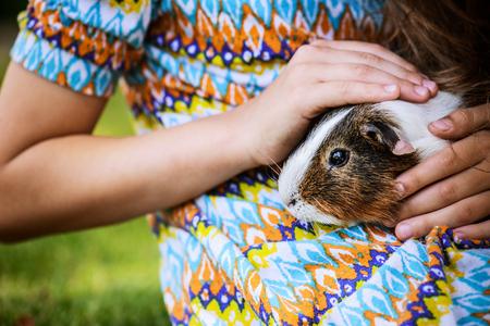 cerdos: Niña que miente en hierba y acariciar conejillo de indias.