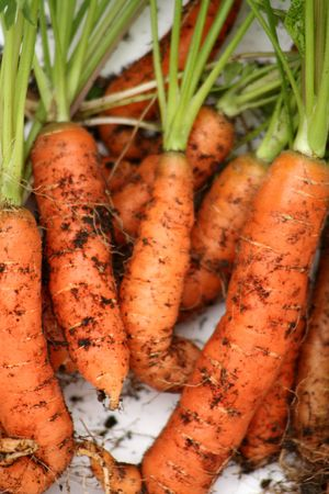 grown: Home grown  carrotsrn
