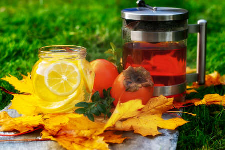 Jar of home made lemo lemonade and jug of tea with persimone fruit and maple leafs against grass on stone slate.