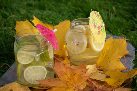 Jars of home made lemone and lime lemonade close-up against grass on stone slate and yellow maple leafs. Stock fotó