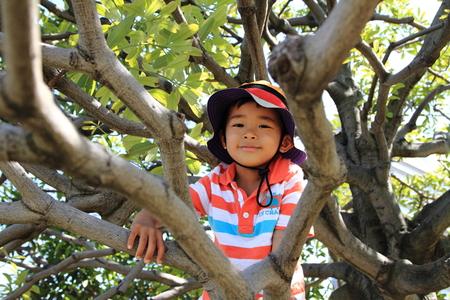 niño escalando: Muchacho que sube el árbol Foto de archivo