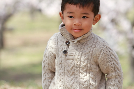 Japanese boy and cherry blossoms photo