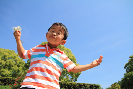 4 years old: Japanese boy blowing dandelion seeds (4 years old) Stock Photo