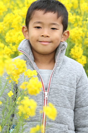 6 years: Japanese boy (6 years old) and yellow field mustard