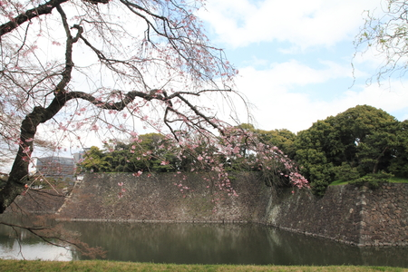 moat: Inui moat of Edo castle in Tokyo, Japan Editorial