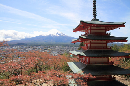 storied: Mt. Fuji and cherry blossoms with five storied pagoda from Arakura yama Sengen park