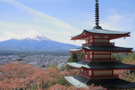 sengen: Mt. Fuji and cherry blossoms with five storied pagoda from Arakura yama Sengen park