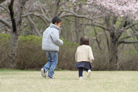 6 year old: Japanese brother and sister (6 years old boy and 1 year old girl) and cherry blossoms