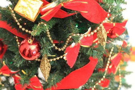 december 25: Christmas tree