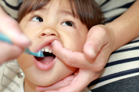 Japanese girl whose teeth are brushed by her mon (3 years old) 写真素材 - 91300243