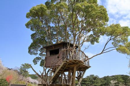 tree house in Higashi izu, Shizuoka, Japan