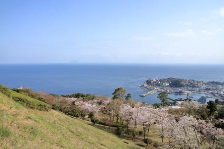 cherry blossoms and landscape of Inadori, Izu, Shizuoka, Japan