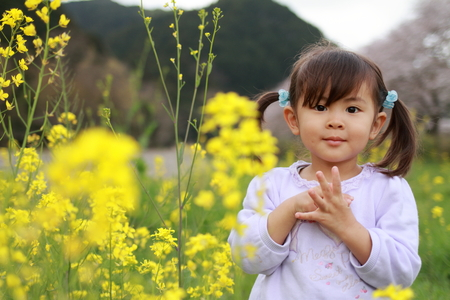 Japanese girl and field mustard (3 years old)