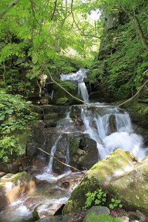 Samusawa current of Oirase mountain stream in Aomori, Japan