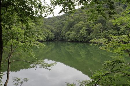 Ketoba pond in Shirakami Sanchi, Aomori, Japan 写真素材