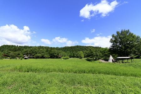 rural scene in Tono, northern Japan (summer) 写真素材