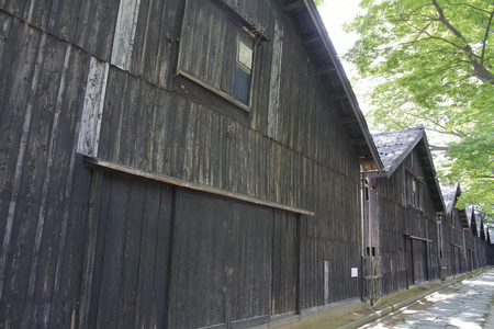 Sankyo warehouse and zelkova trees in Sakata, Yamagata, Japan