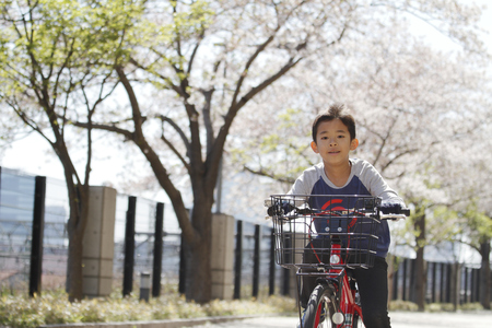 Japanese boy riding on the bicycle under cherry blossoms (fourth grade at elementary school) Stock Photo