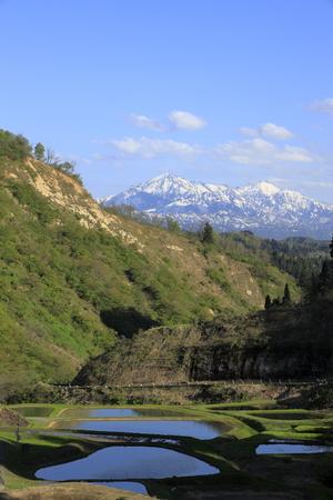 terraced rice field and Echigo mountains in Yamakoshi, Nagaoka, Niigata, Japan Standard-Bild - 124941825