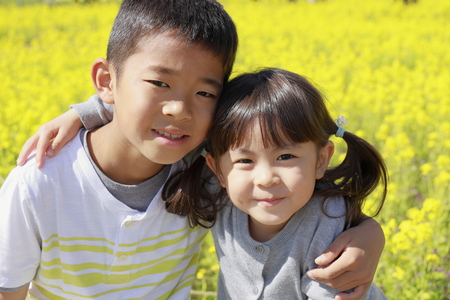 Japanese brother and sister and field mustard (9 years old boy and 4 years old girl)