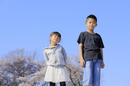 Japanese brother and sister and cherry blossoms (10 years old boy and 5 years old girl) 스톡 콘텐츠