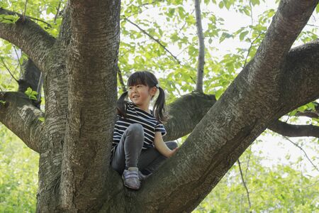 Japanese girl climbing the tree (5 years old)