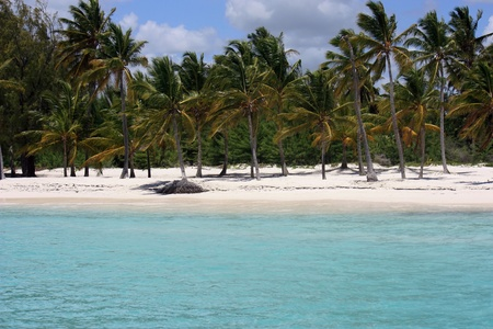 caribbeans: perfect unspoiled deserted beach