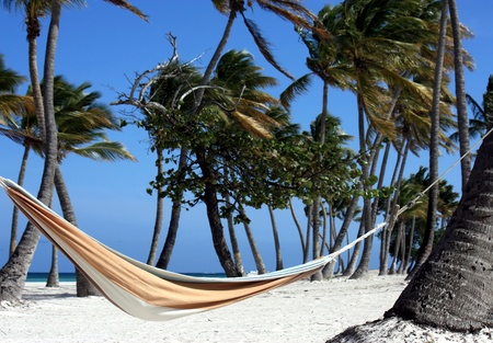hammock on perfect beach Stock Photo - 9436393