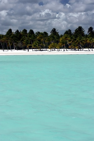 caribbeans: turquoise blue ocean water background